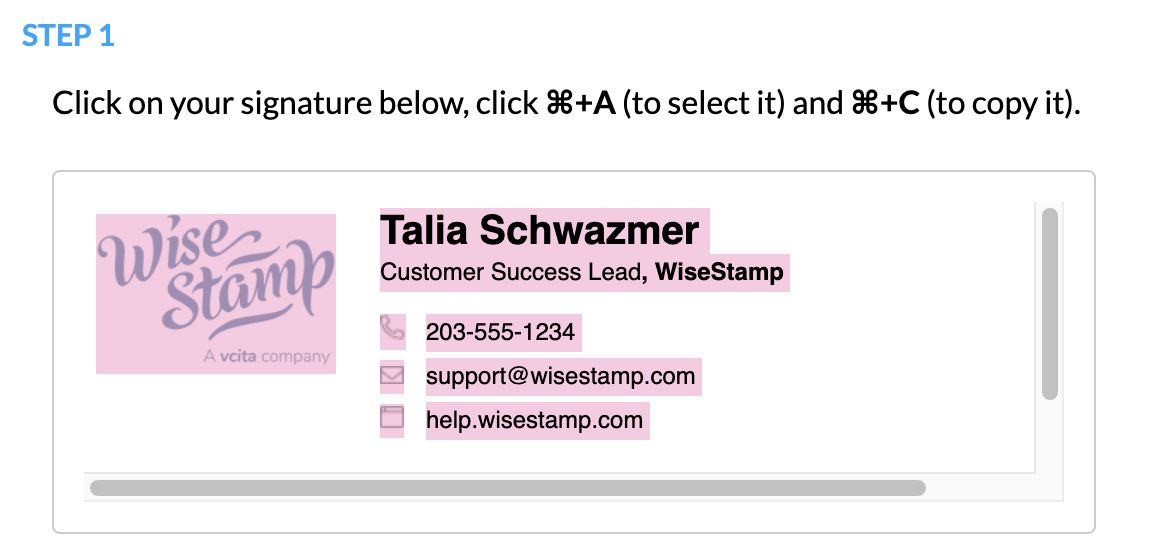 Screeshot showing how to select the signature in the WiseStamp Mac Mail export feature